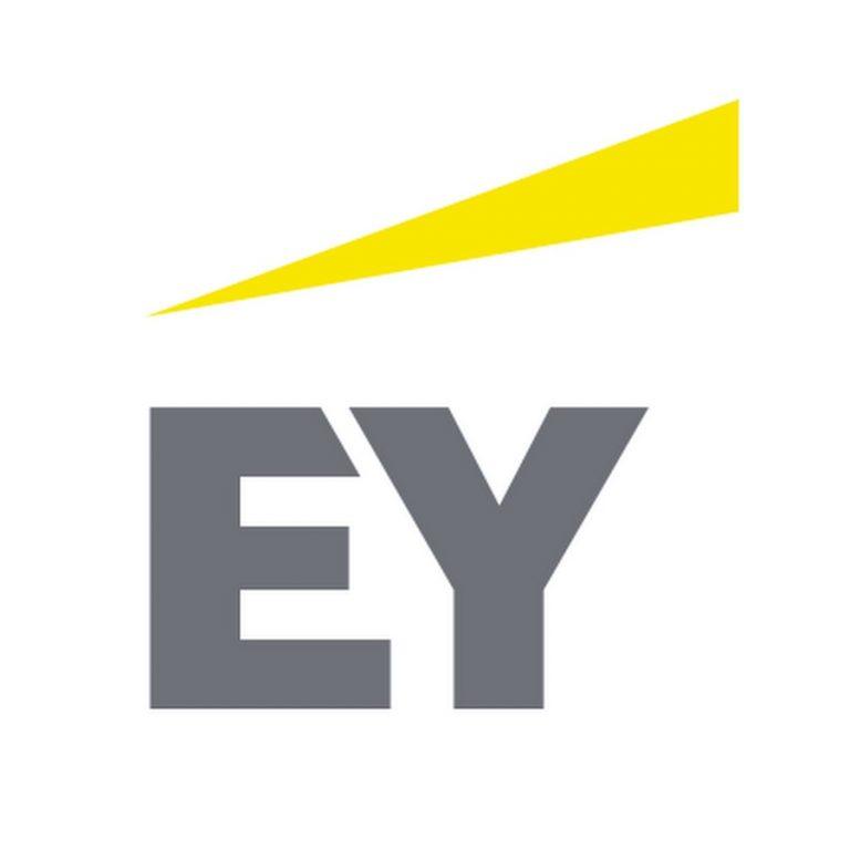 Meeup Mayo 2020 en EY por Zoom